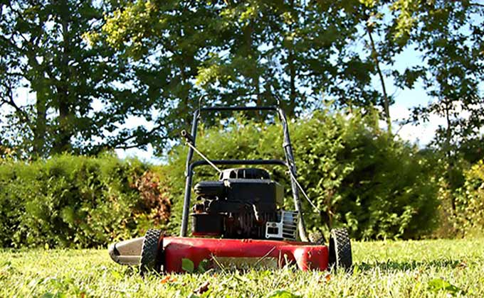 Lawn Maintenance Landscape Services